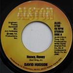 David Hudson - Honey Honey